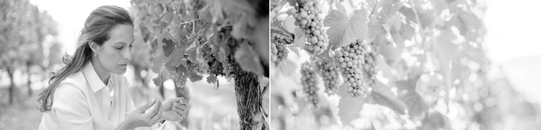 Bibiana Visiting the Vineyards