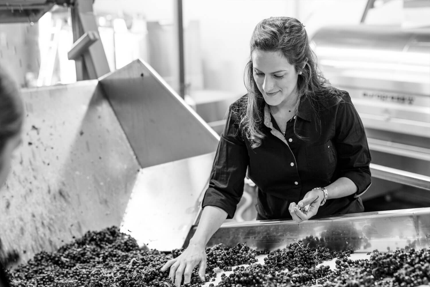 Bibiana Working with Grapes in the Winery