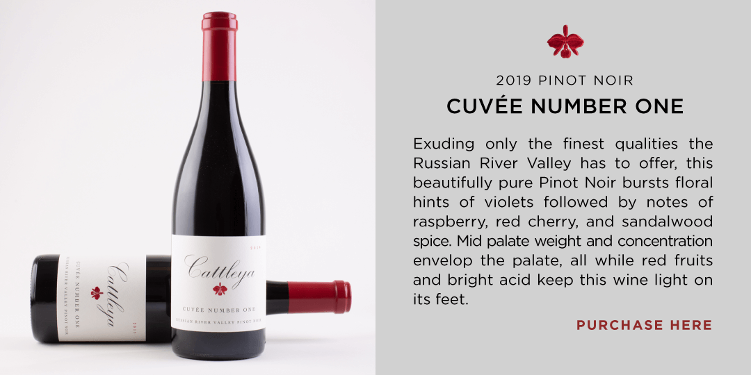2019 Pinot Noir Cuvee Number One